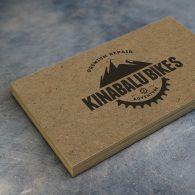 Kraft Business Card 1000